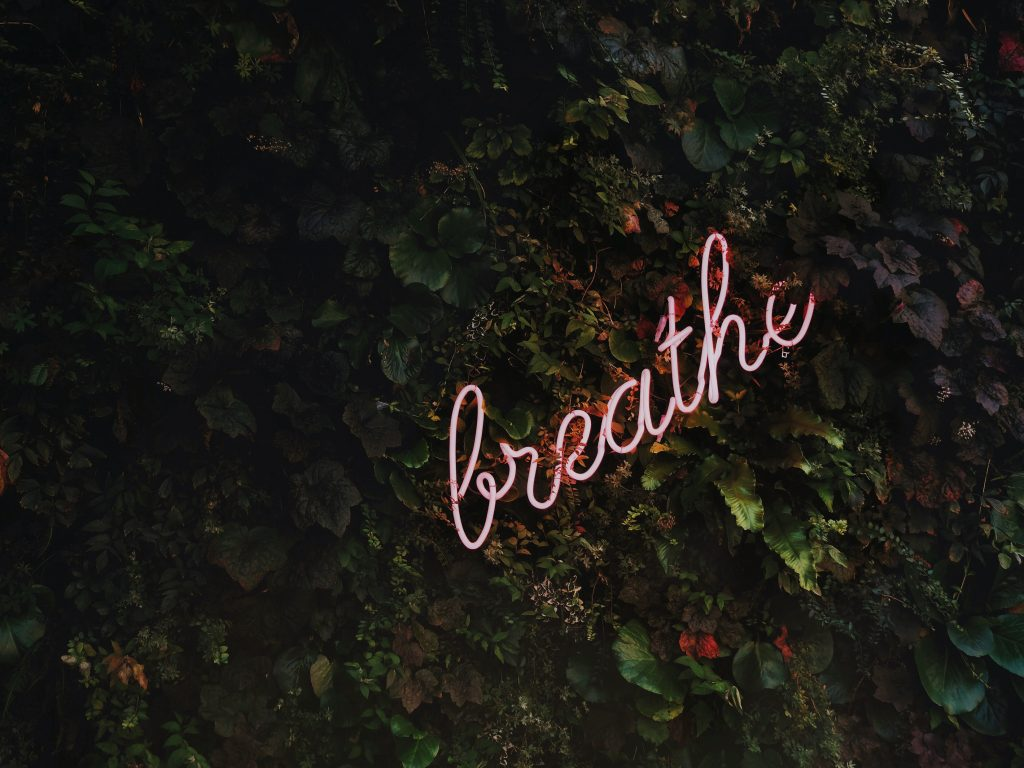 Neon breathe sign on green wall