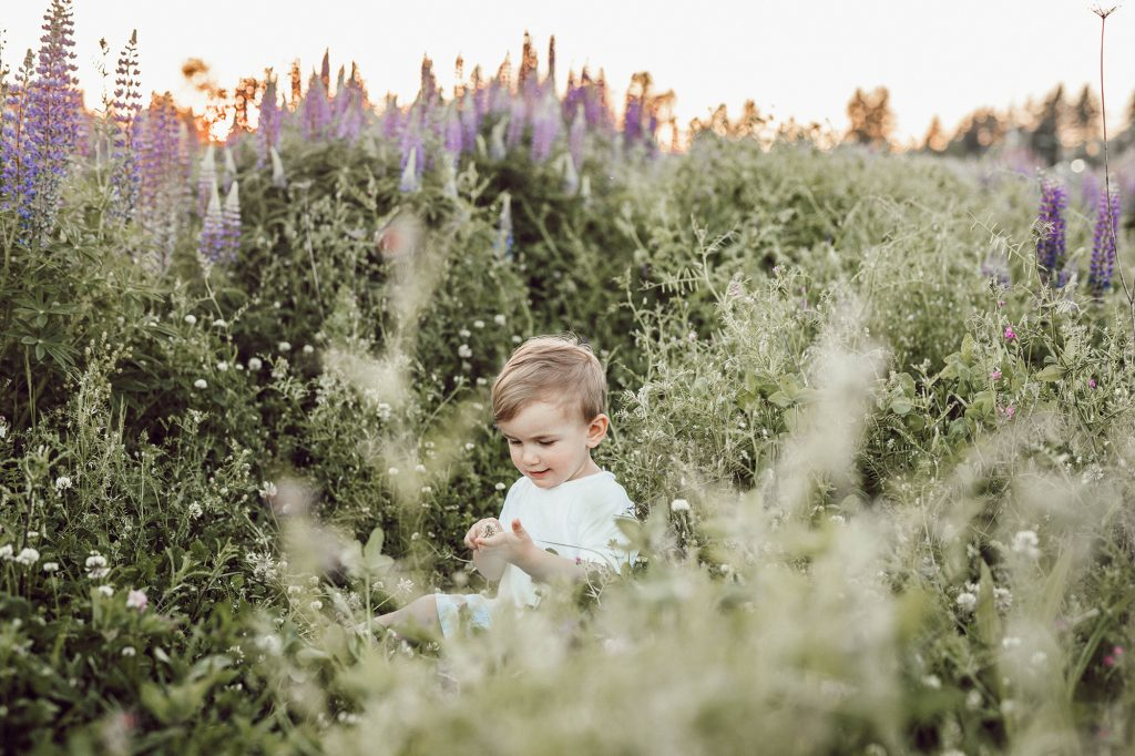 Young boy playing in flower garden