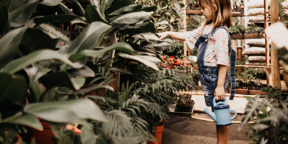 zero waste mama disrupt